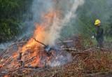 Министерство природы Марий Эл объявило об окончании пожароопасного сезона