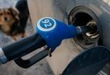 Марий Эл  занимает 67 строчку в рейтинге страны по доступности бензина для населения